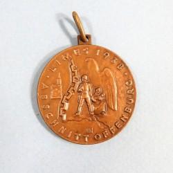 MEDAILLE ALLEMANDE POUR LA CONSTRUCTION DE LA LIGNE DE DEFENSE A LA FONTIERE SECTION D'OFFENBOURG 1938