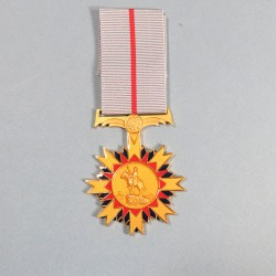 AFRIQUE DUSUD NAMIBIE MEDAILLE ETOILE POUR MERITE STAR FOR MERIT NAMIBIA SOUTH AFRICA °